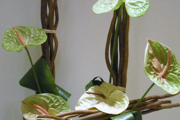 Creaciones Florales Anthuriums