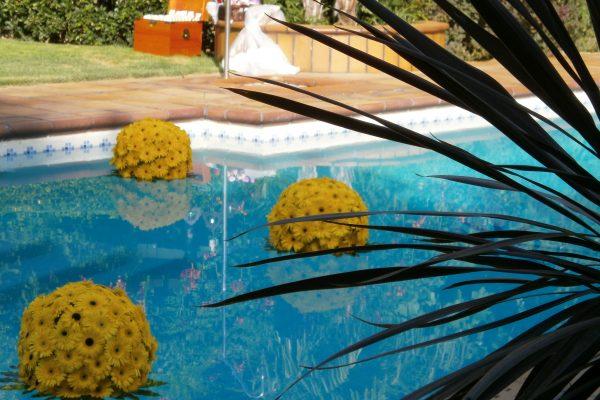 Creaciones Florales Bolas de Gerberas