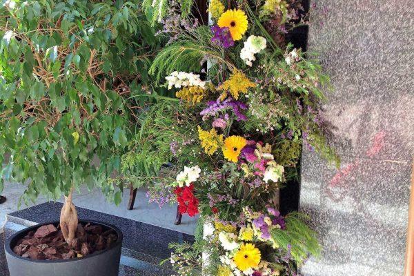 Decoración jardín de Miguel Ángel