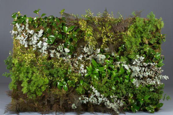 Creaciones Florales Jardín Vertical con Placas