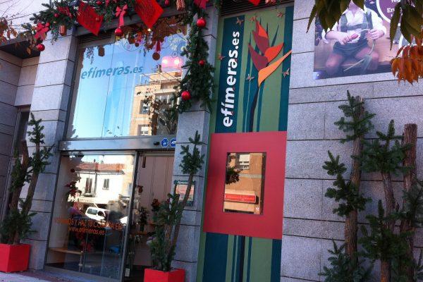 Tienda navidad 2009