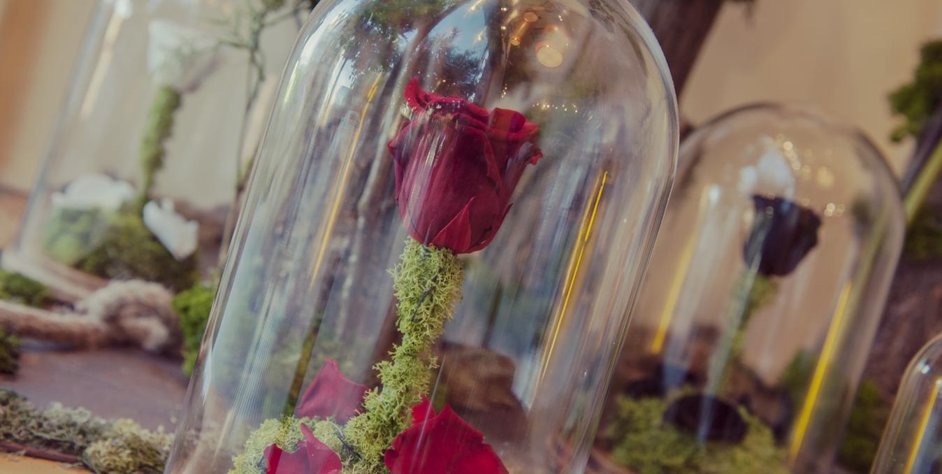 efimeras-rosa-bella-y-bestia-regalos-especiales-amor-slide-2