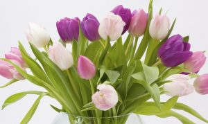 Ramo de tulipanes para pedir online en Madrid