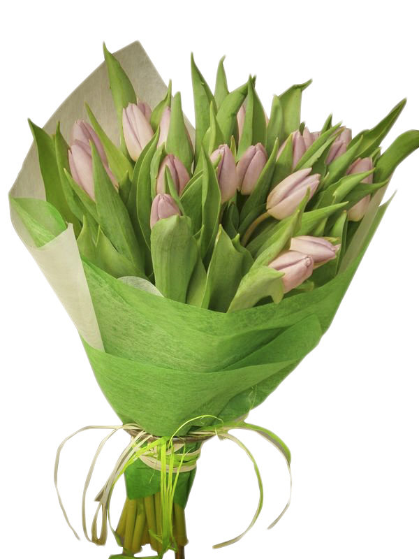 Ramo de tulipanes para enviar en Madrid