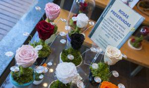 Flores naturales preservadas en la tienda de Efímeras en Madrid