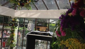 Efimeras-flores-hotel-miguel-angel-jardin-2