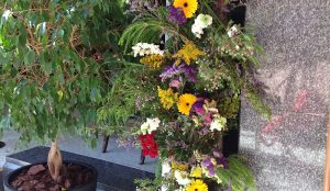 Efimeras-flores-hotel-miguel-angel-jardin