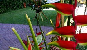 monte-viejo-decoracion-floral-efimeras-madrid (11)