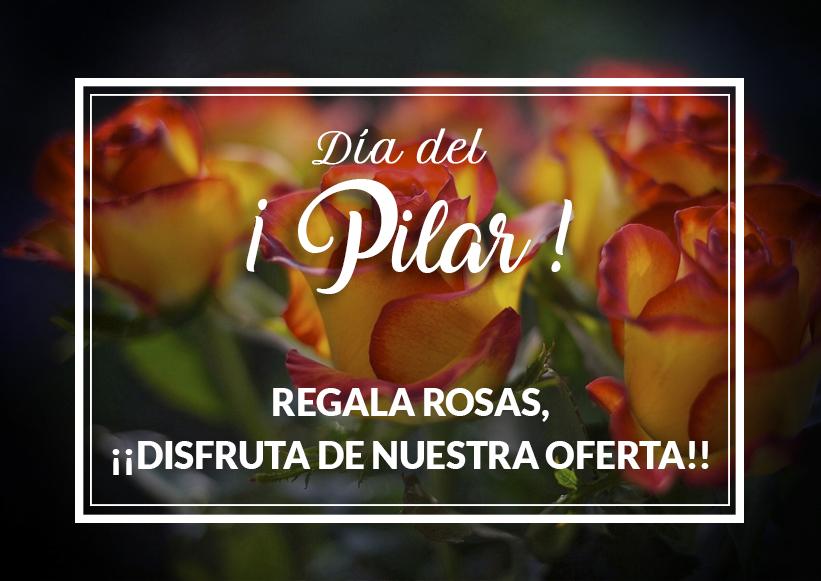 Regalar Flores En El Día Del Pilar Y De La Hispanidad La Mejor Idea Efímeras