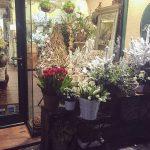 Flores en escaparate de Navidad