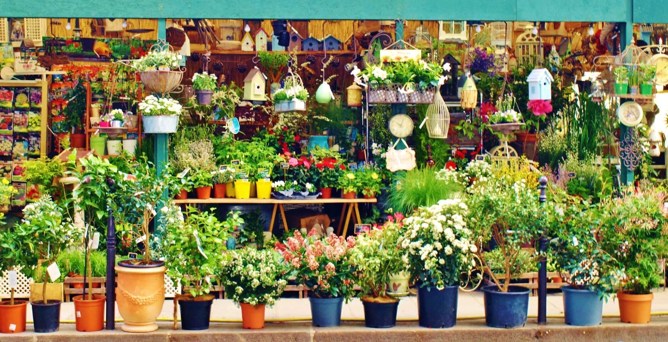 Mercado de las flores de París. Si buscas mercadillos de flores este es ideal.