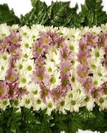 regalar-flores-con-numero-cumpleaños.jpg