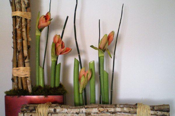 Creaciones Florales Amarylis