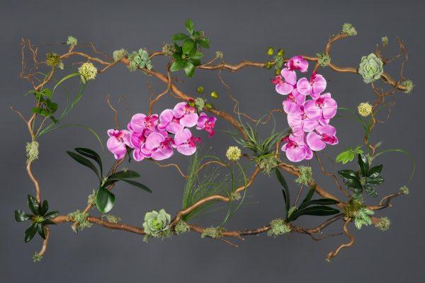 Creaciones Florales Cuadro Vegetal con Orquídeas