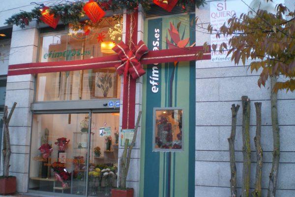 Tienda navidad 2010