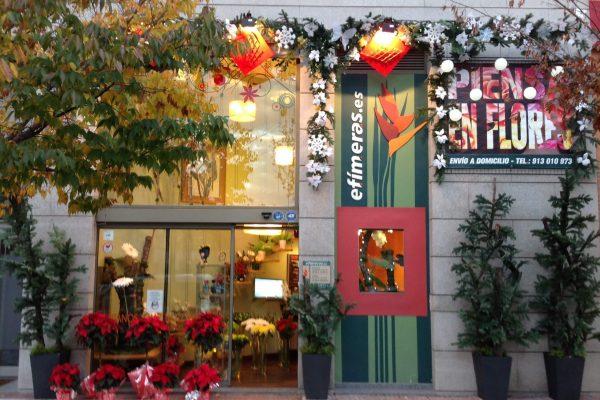 Tienda navidad 2014