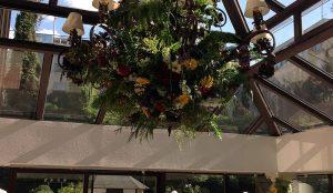 Efimeras-flores-hotel-miguel-angel-jardin-1