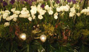 casino-salamanca-efimeras-decoraciones-florales (4)