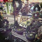 Ideas para decorar en Madrid con flores y plantas